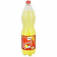 Cora soda agrumes pet 1.5l