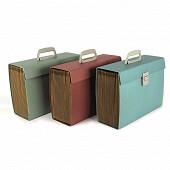 Clémentina Frog trieur ménager portable en carton multicompartiments coloris fun