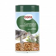 Cora - Aliment  pour tortues aquatiques 30g