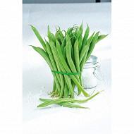 Haricots verts très fins barquette 500g