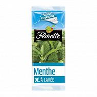 Florette menthe 11g
