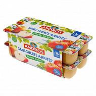 Andros spécialité de pommes nature 16x100g sans sucres ajoutés