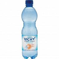 Vichy celestins eau minerale nturelle gazeuse 50cl