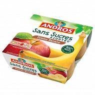 Andros purée de pommes et de bananes 4x100g sans sucres ajoutés