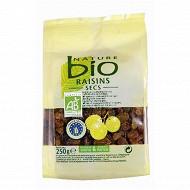 Nature bio raisins secs sachet 250g