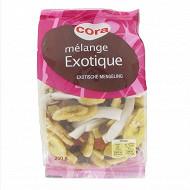 Cora mélange exotique 250g
