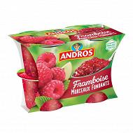 Andros dessert de framboises et pommes avec morceaux 4x100g