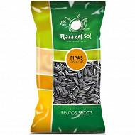Plaza del sol graines de tournesol pipas grillées 250g
