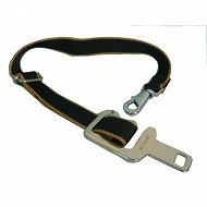 Attache ceinture chiens