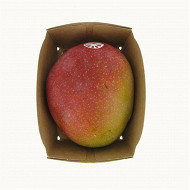 Mangue bio barquette 1 fruit