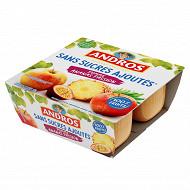 Andros spécialité de pommes ananas et fruits de la passion 4x100g sans sucres ajoutés