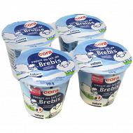 Cora yaourt au lait de brebis nature 4x115 g