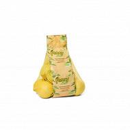 Citron jaune bio sachet 500g