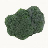 Brocoli bio 500g