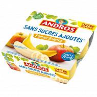 Andros dessert fruitier sans sucre ajouté pomme banane 4x100g offre découverte