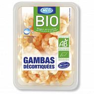 GAMBAS BIO NATURE