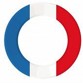 Assiettes x10 flag france 23cm ronde