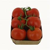 Tomate grappe bio 500g