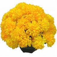 Chrysanthème x36 en coupe 55x55x45cm