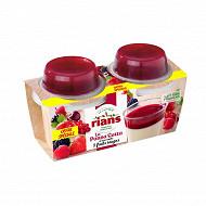 Rians panna cotta et son coulis fruits rouges 2x120g offre spéciale