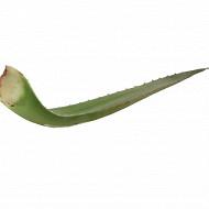 Aloe vera bio 500g