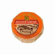 Munster géromé aop au lait pasteurisé de vache