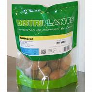 Pomme de terre monalisa 28/35 clipack 25 plants