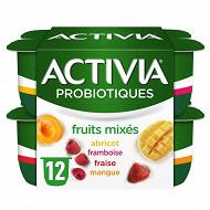 Activia bifidus fruits mixés panaché 12x125g