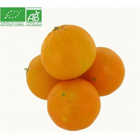 Orange a bouche bio le kilo