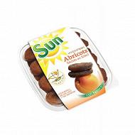 Abricot sec 100% nature