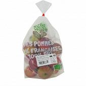 Pomme bicolore bio