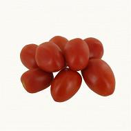 Tomate alongée