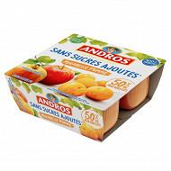 Andros dessert fruitier sans sucre ajouté pomme mirabelle 4x100g