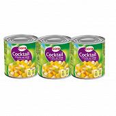 Cora cocktail 4 fruits sirop léger 100% saccarose 3x1/4 630g