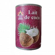 Thai expert lait de coco 400ml