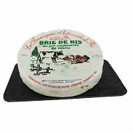 Brie de ris lait de vache pasteurisé 28%mgpt