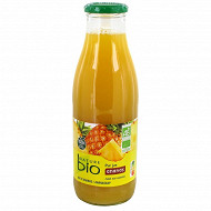 Nature bio pur jus ananas 75cl