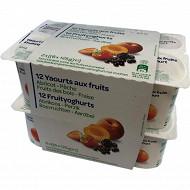Yaourt aux fruits panaché 12x125g