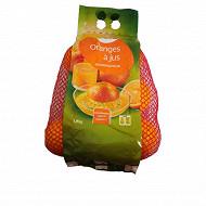 Orange à jus Cora 1.5kg