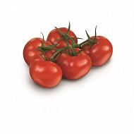 Tomate ronde grappe bio 500 g