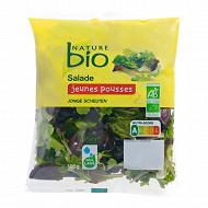 Nature bio jeunes pousses bio 100g