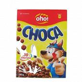 Mélange de céréales au goût chocolat 10 vitamines 250 g