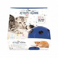 Activité attrape-souris pour chat