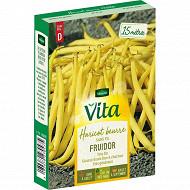 Vita Vilmorin haricot fruidor