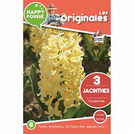 3 jacinthe yellowstone 15/16