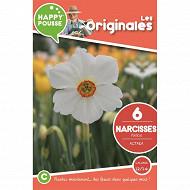 6 narcisse poeticus actaea 12/14
