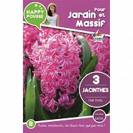 3 jacinthe pink pearl 15/16