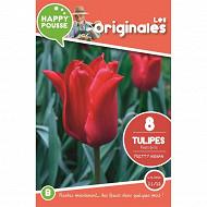 8 tulipe fleur de lis pretty woman 11/12