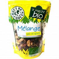Mélange graines et raisin bio 100g