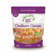 Raisins golden sachet 250g